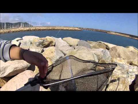 Le seggiole pieghevoli per pescare a 150 kg