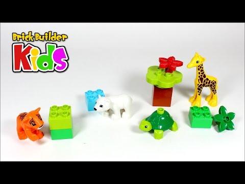Vidéo LEGO Duplo 10801 : Les bébés animaux du monde