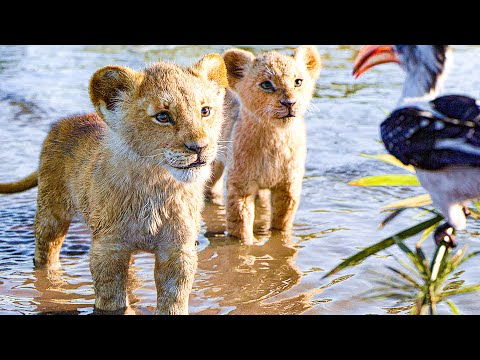 THE LION KING All Movie Clips + Trailer (2019)
