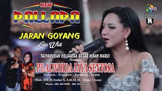 JARAN GOYANG LALA WIDI NEW PALLAPA LIVE GEMBLUNG SUKOLILO 2018
