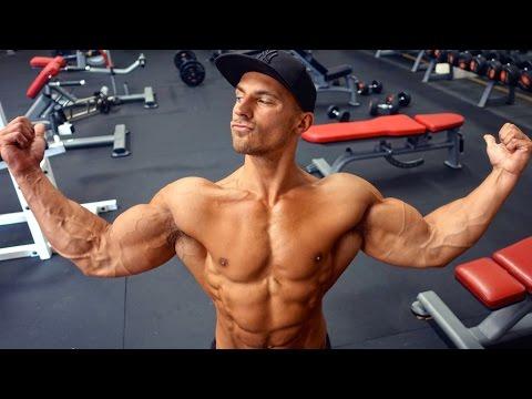 Pour le terme court les muscles pectoraux