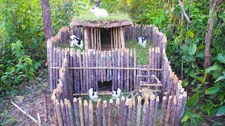 Build Amazing Rabbit House