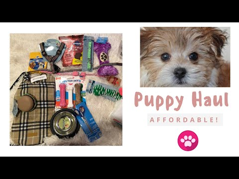 SHOP WITH ME AT PETSMART | NEW PUPPY HAUL 2018