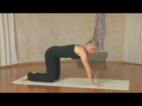 , title : 'Yoga, Chaturanga Dandasana'