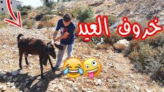 خروف العيد | اسلام العشي
