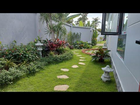 Trang trí cây xanh cho sân vườn đơn giản nhất
