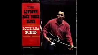 Red's Dream by Louisiana Red (1963)