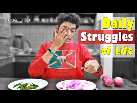 Daily Struggles of Life | GrowLogical