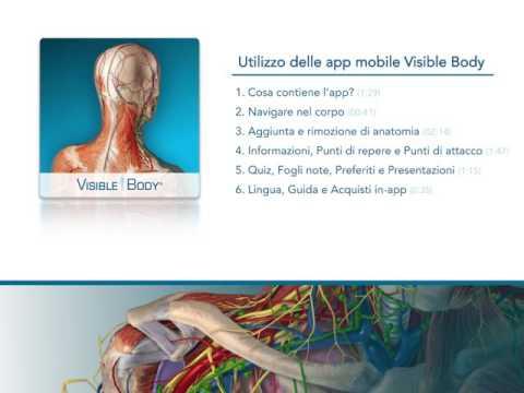 Calcificazioni nella ghiandola prostatica