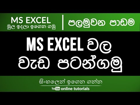 Microsoft Excel Beginner Course (Sinhala) Part 01 - Introduction to Interface