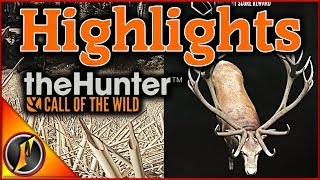 Gambar cover Hirschfelden Stream Highlights | theHunter Call of the Wild