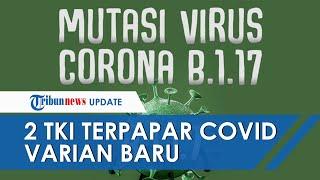 Kronologi 2 TKI Karawang Terinfeksi Virus Corona B 1 1 7, Pulang Setelah Karantina di Jakarta