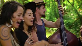 Rising Appalachia - I Shall Be Released - On the Farm Sessions @Pickathon 2018 S06E03