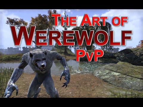 Commentary] How to PvP in Werewolf Form - Gameplay and Tips! — Elder