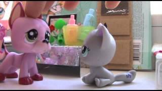 ♥ Littlest Pet Shop: Красотка (1 сезон 7 серия) ♥