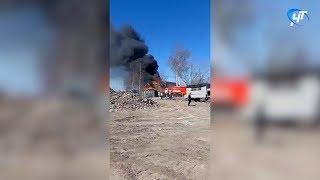 В окрестностях Великого Новгорода произошло сразу несколько пожаров