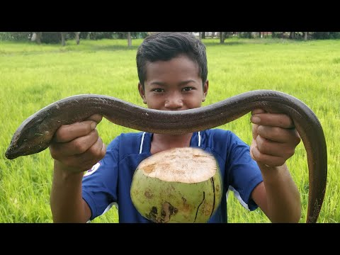 Roasted Eels with Coconut Water / Big Eel Cooking Recipe
