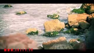 عالشط - محمد وديمة بشار | طيور الجنة
