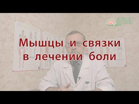 Мышцы и связки в лечении боли
