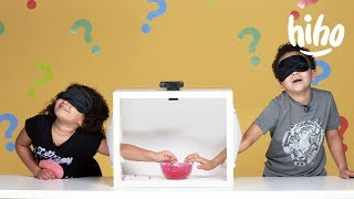 Kids Guess What's in the Box!   Episode 1   HiHo Kids