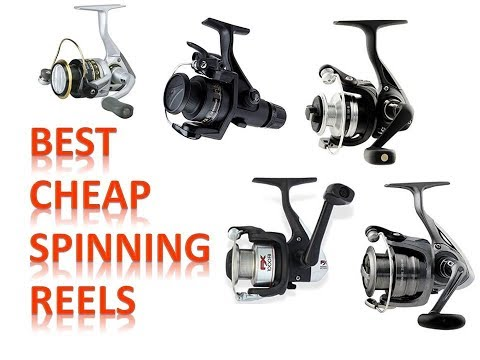 Best Cheap Spinning Reels
