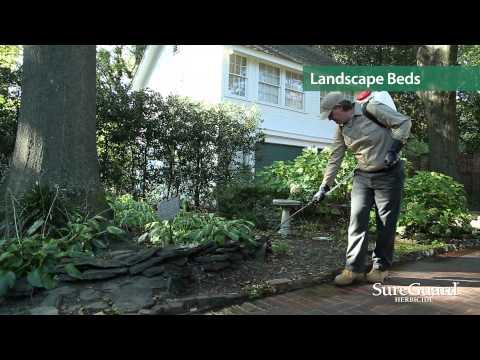 SureGuard Herbicide LCO Application Video