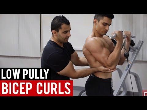BICEP CURLS on Low Pully (Hindi / Punjabi)