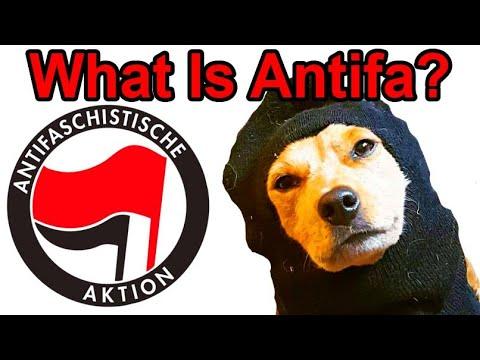 What is Antifa? (Debunking Myths About Antifa) - Radical Reviewer