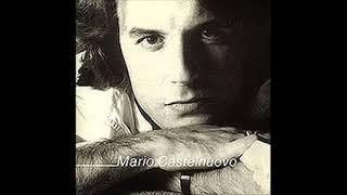 Mario Castelnuovo - Vento nel vento  (Lucio Battisti)