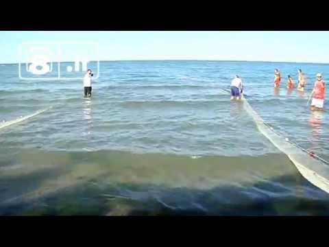 Perché sono necessari una posizione di testa per pesca