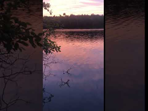 Video Of West Chickenbone Campground, MI