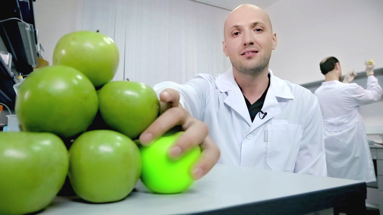 GMOs: Technologies of their creation and application. Trailer