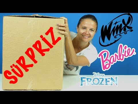 Winx Stella Frozen Karlar ülkesi | Sürpriz Oyuncak Kolisi 2 | EvcilikTV Oyuncaklar