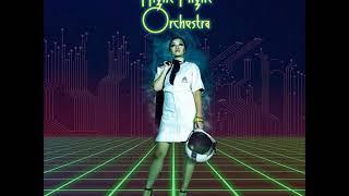 The Night Flight Orchestra   Domino