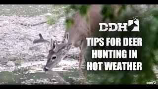 Proven Tips for Deer Hunting in Hot Weather | Deer Talk Now @deerhuntingmag