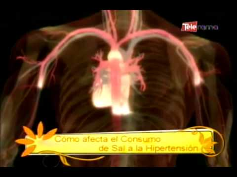 Cambios morfológicos de las arterias en la hipertensión