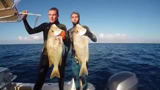 Spearfishing New Caledonia
