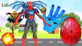SPIDERMAN Egg Surprise ☘ New Finger Family Surprise Egg Rhymes ☘ LidoTV Surprise Eggs Videos