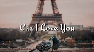 Lizzo   Cuz I Love You (Lyrics)