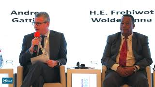 ROUNDTABLE 2 – FINANCING RISKS AND CHALLENGES FOR ENERGY TRANSITION IN AFRICA