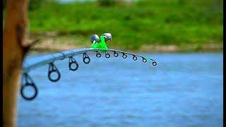 Вот это рыбалка самое интересное в блогах