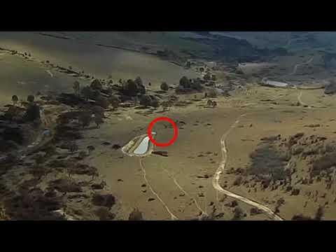 fpv-ranger-chasing-zacs-mini-talon