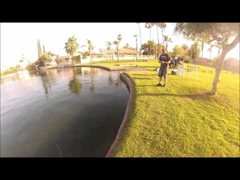 Pond Fishing with hatcam!