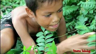 Primitive Technology - Eating delicious - Cooking fish egg on a rock