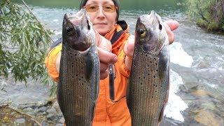 Озеро кокуйское алтайский край рыбалка