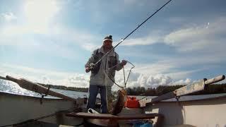 Рыболовные базы северная карелия