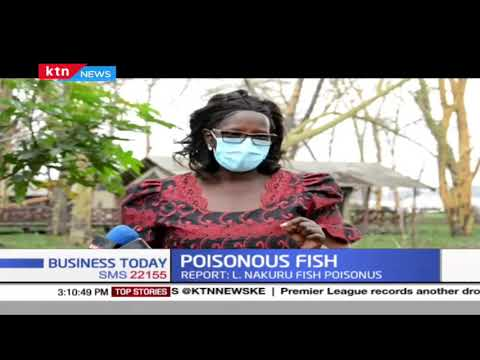 Report by KEMFRI declared Lake Nakuru fish poisonous with fish rotting within 3 hours
