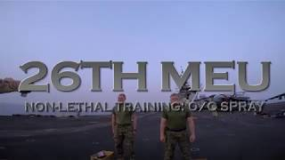 DFN:26th MEU: Non-lethal training, OC spray!, U.S. 5TH FLEET AREA OF RESPONSIBILITY, 05.11.2018