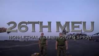 DFN:26th MEU: Non-lethal training, OC spray!, U.S. 5TH FLEET AREA OF RESPONSIBILITY, 05.11.2018