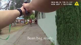 Dog Beat To Death Liveleak